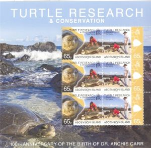 ASC178SHM4 Turtle Research